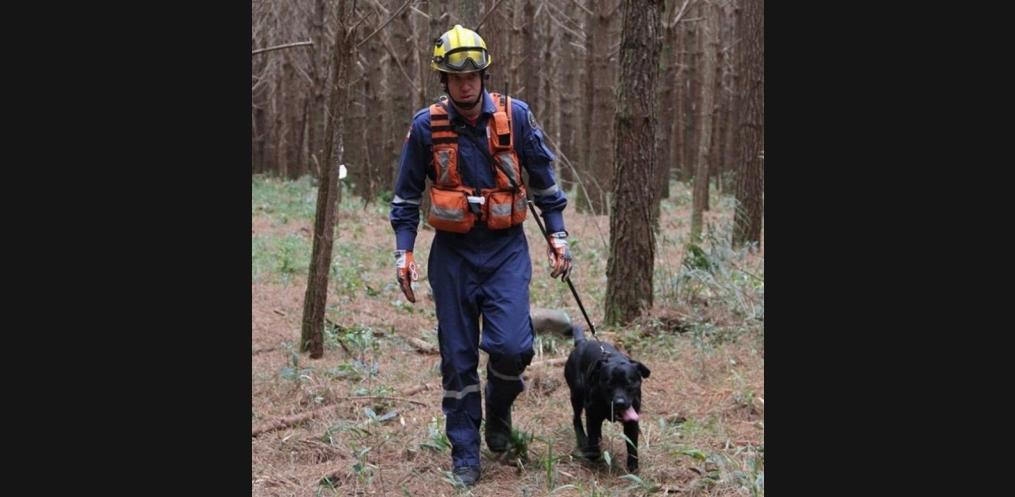 Cão Barney com seu condutor, soldado Rangel (Foto: Corpo de Bombeiros)