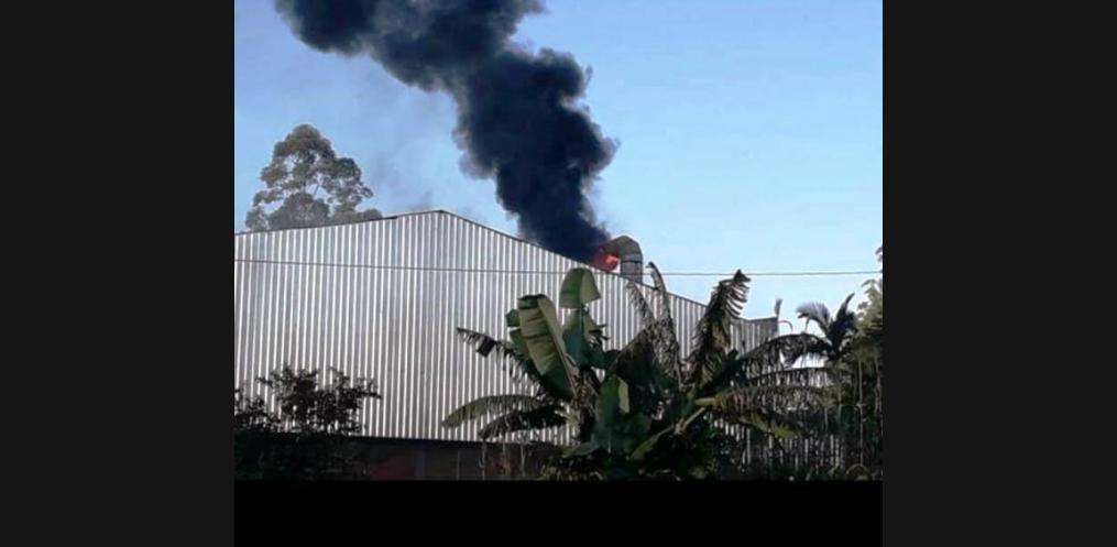 Empresa de Mondaí é novamente atingida por incêndio (Foto: Reprodução / WhatsApp)