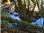 Corpo de Idoso desparecido é encontrado em Riacho no Oeste