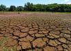 Estado inicia repasses de R$ 300 milhões para minimizar os impactos da estiagem