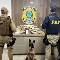 PRF apreende 21 Kg de pasta base de cocaína e 5 Kg de crack na BR-282