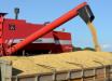 Produção de grãos deve crescer 5% na próxima safra em SC